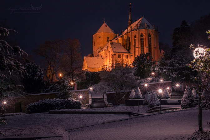 Münster St. Vitus