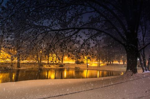 Geroweiher bei Nacht