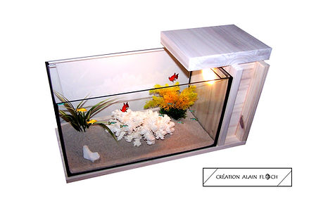 vente chaude en ligne 4c3d9 420cd CONSEIL (S) TABLE BASSE AQUARIUM TERRARIUM poissons, tortues