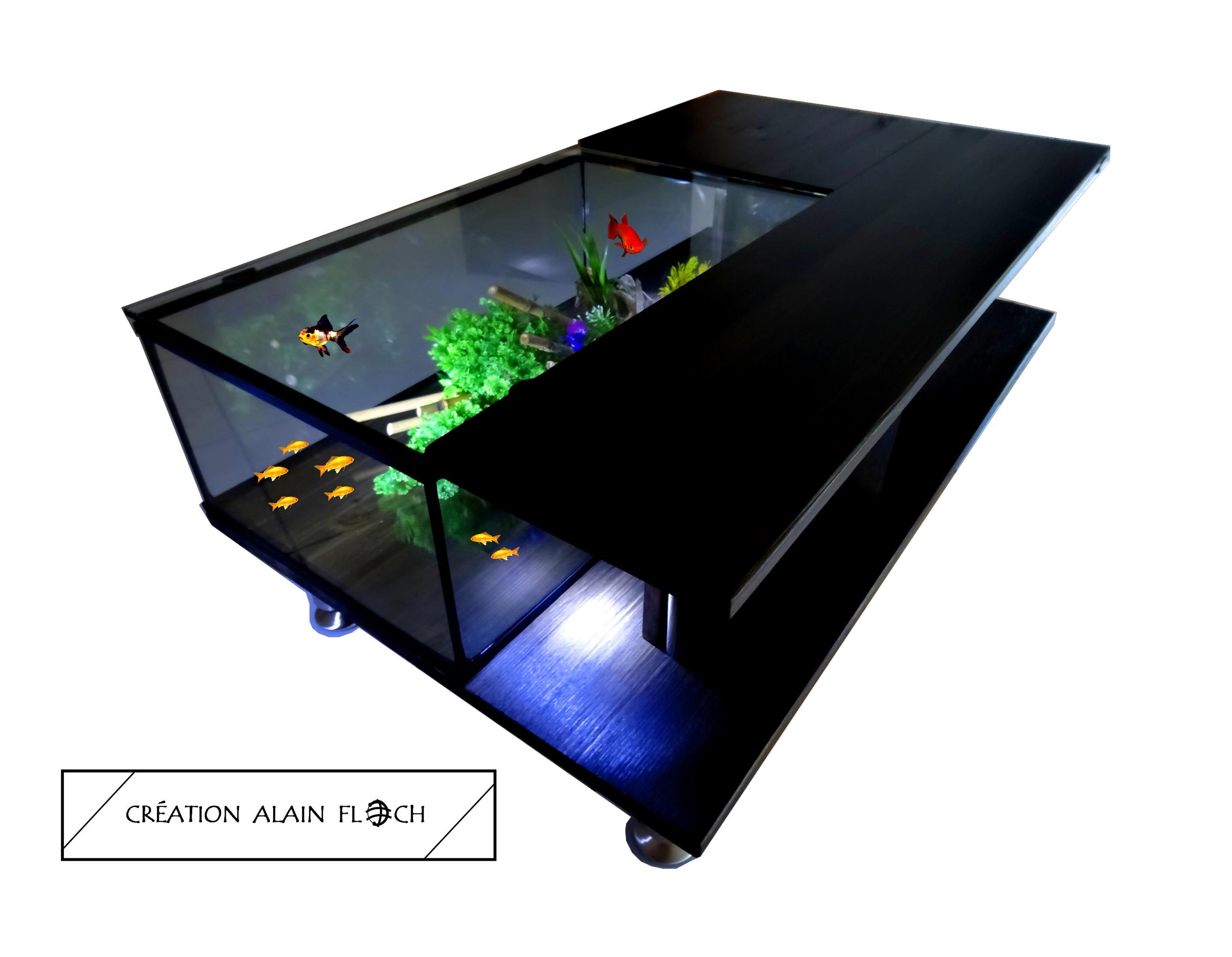 conseil s table basse aquarium terrarium poissons tortues. Black Bedroom Furniture Sets. Home Design Ideas