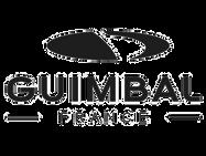 guimbal-logo.png