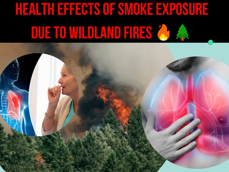 Health Effects of Smoke Exposure Due to Wildland Fires