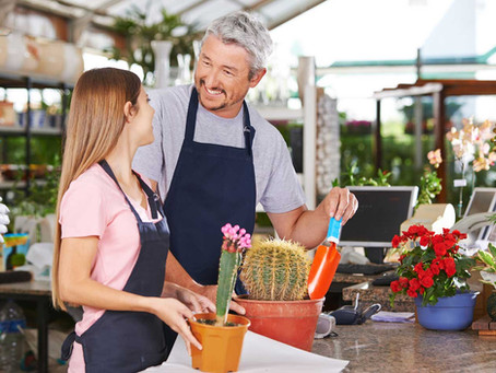 """The importance of brand positioning """"relevance, differentiation and credibility"""" for garden centres"""