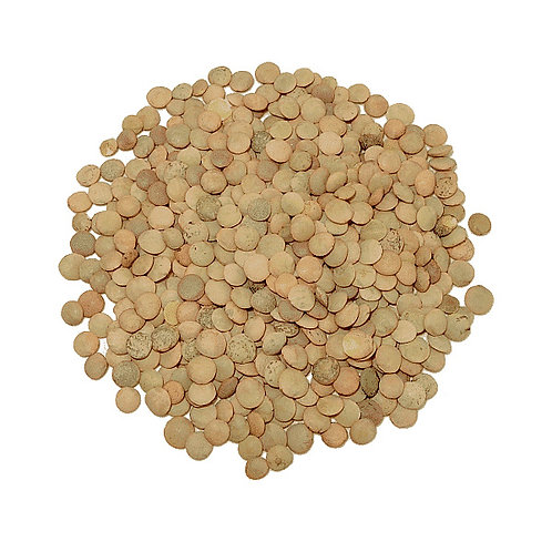 Lenteja castellana (500 gr.)