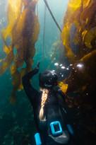 Alex sliding through the Kelp Maze