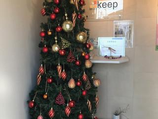 恒例クリスマスツリー
