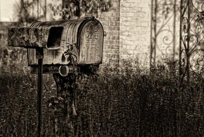 Snail Mail.jpg