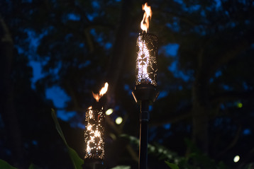 Torches 1