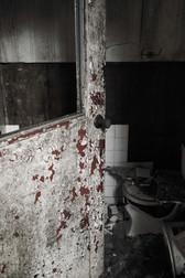 Bathroom Door 2.jpg