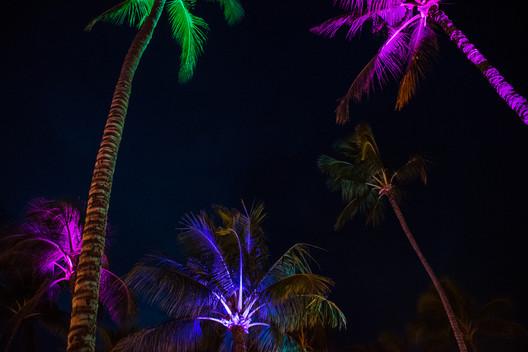 Tree Lights 1