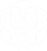 geometry_linework_3.png