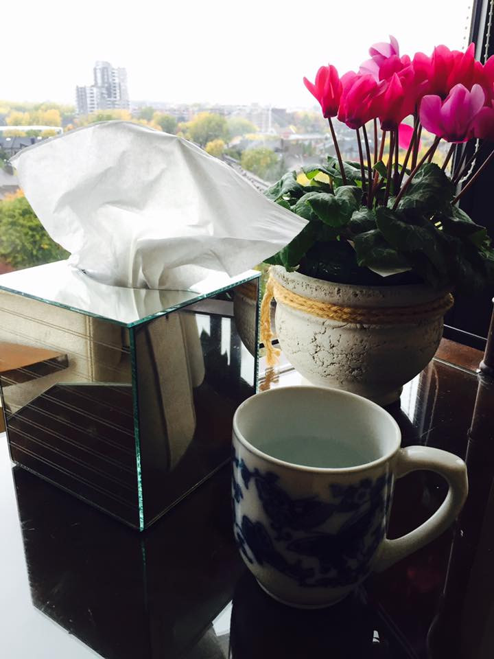 cold flu self-care