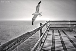 Mirador - Jose Sancho Photography