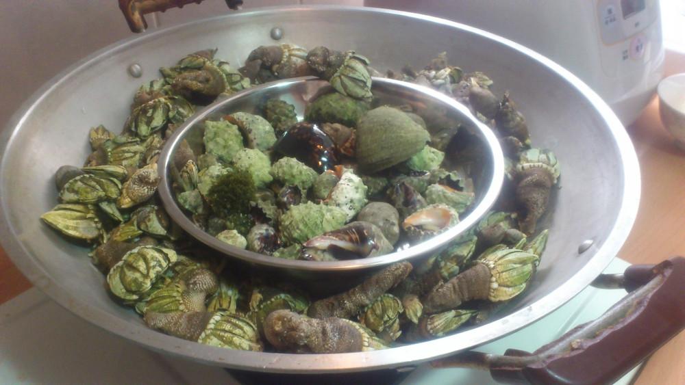 俗稱筆架的龜足貝(佛手)