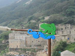 尋查閩越族蛙與蛇的圖騰崇拜