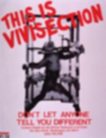 vivi poster1 Screen-Shot-2015-10-07-at-3