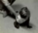 ssm Floor Screen-Shot-2015-10-07-at-1.41
