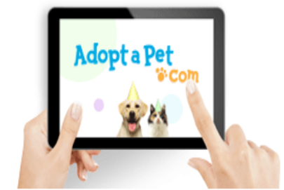 Adopt-A-Pet adoptapet Alex Pacheco 600 Million Dogs