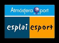 ESPLAI ESPORT ATMOSFERA 1.png
