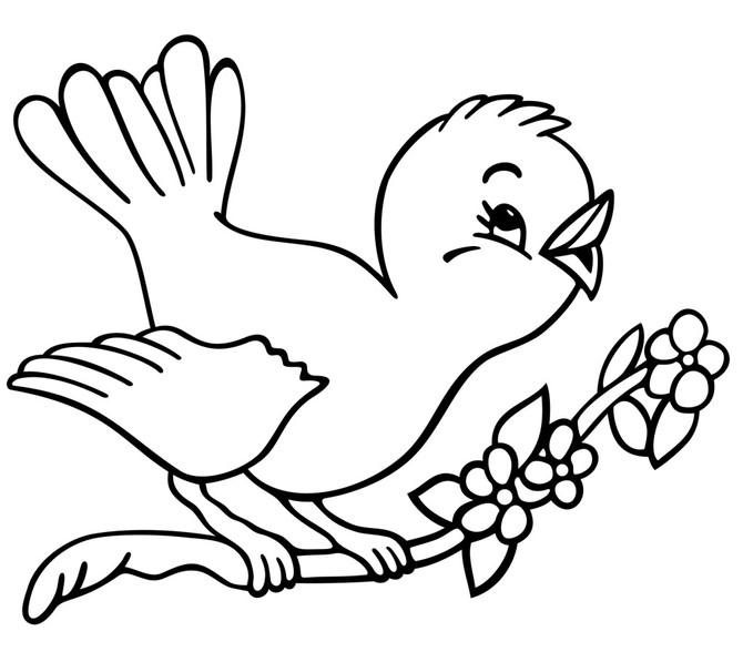 O passarinho que gostava de vírgulas