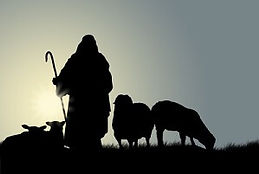 outline-shepherd-and-sheep-Copy.jpg