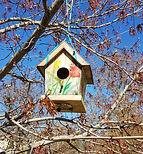 Birdhouse  Maple Hill 2021 (002).jpg