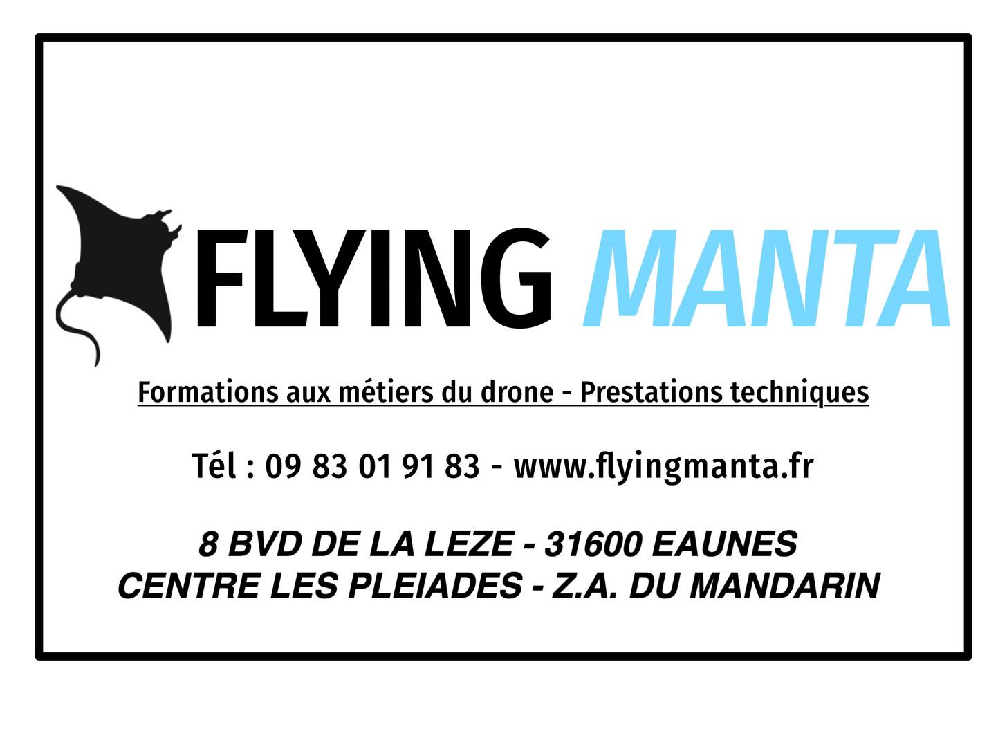 Sticker panneau pub Fliyng Manta.jpg