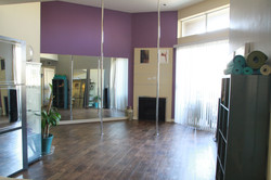 Studio w/ 2 poles setup
