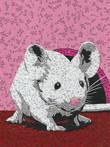 Marie-Marie la petite souris
