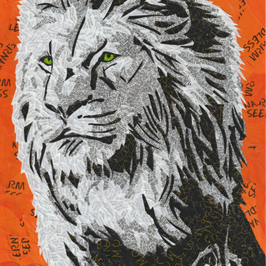Momo le Roi des animaux