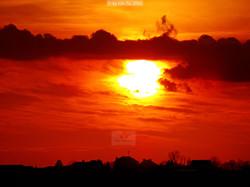 sunset+filter 02272016