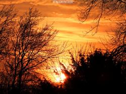 sunset 03092016+filter