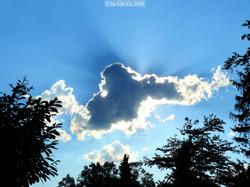 Cloud 1+f  may 2016