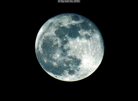 a Night of the Moon...