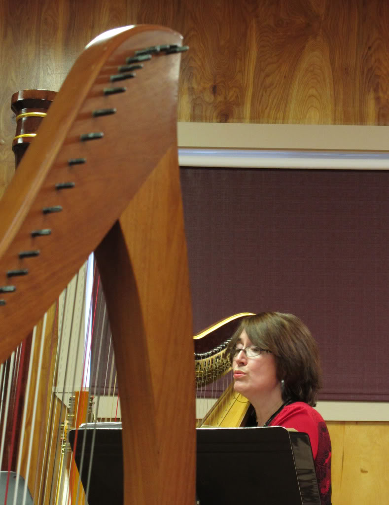 Solo concert at harp camp