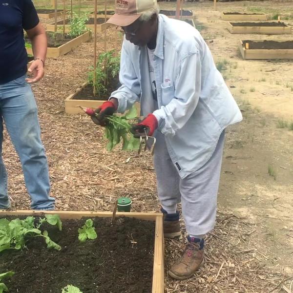 Catawba Trail Farm garden with Exceutive Director, Delphine Sellars.