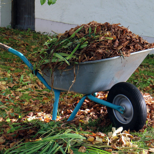 Garden Waste Collection Subscriptions