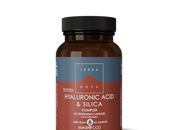 Hyaluronic Acid and Silica