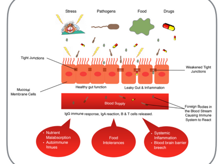 Rosacea and Leaky Gut