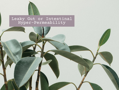Leaky Gut or Intestinal Hyper-Permeability