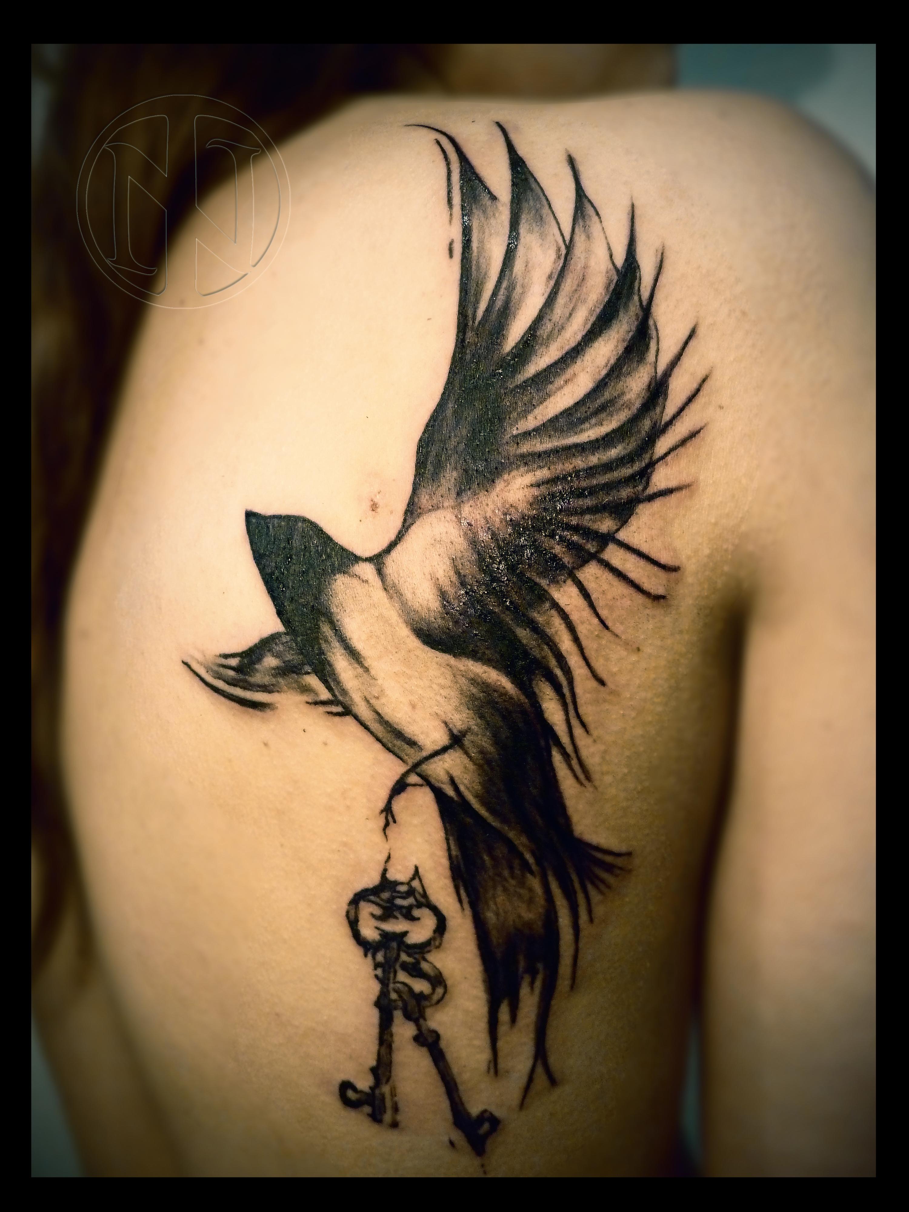 12 Vogel