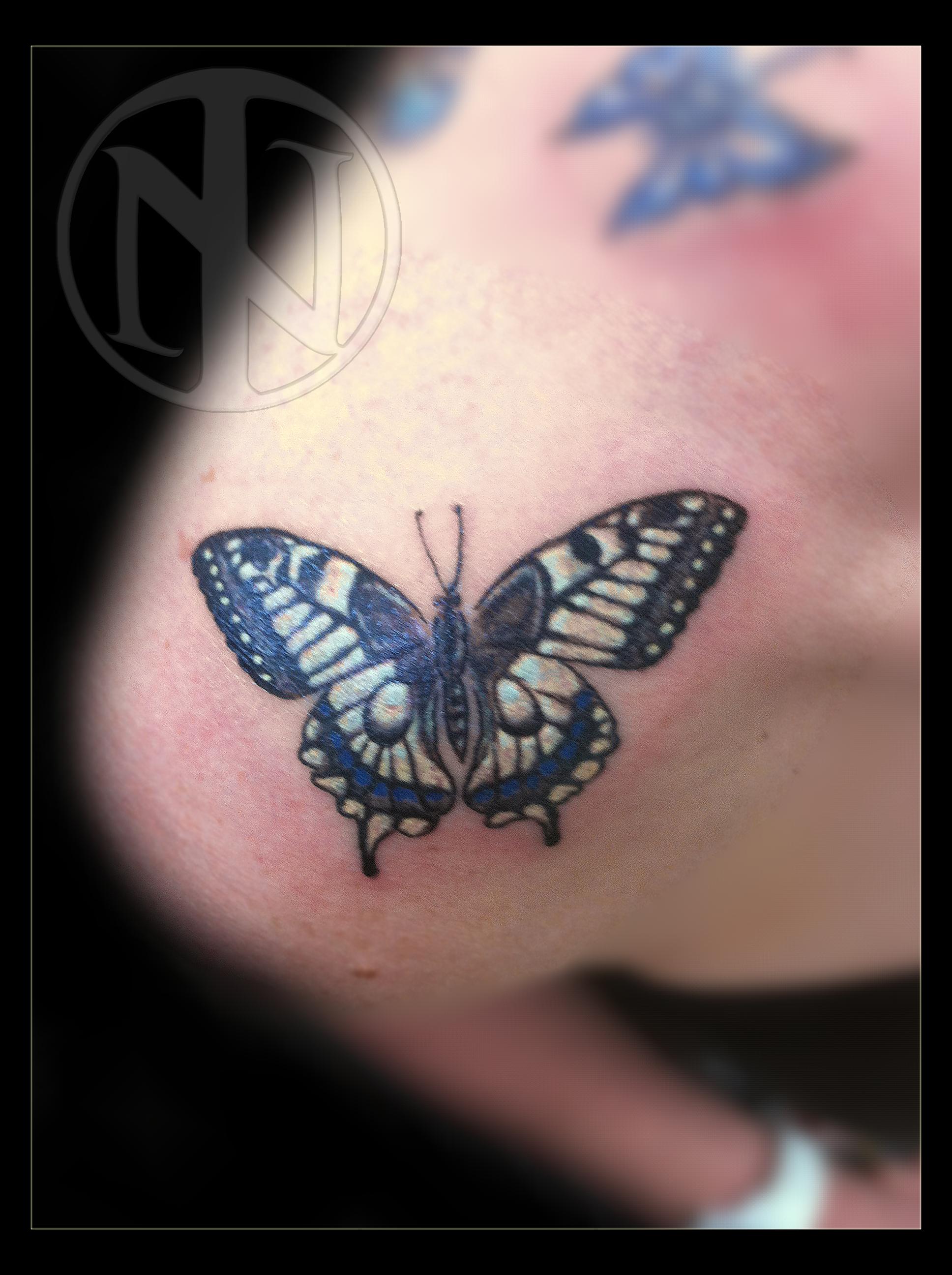 Schmetterling 2.jpg