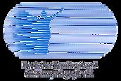 Emblem 6 oval mit DBfT blau.png