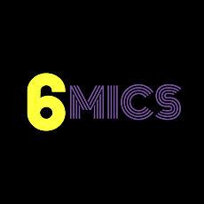 6 MICS LOGO