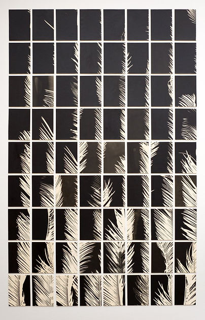 2018011-A-Palm-Tree-Is-A-Palm-Tree-Is-A-