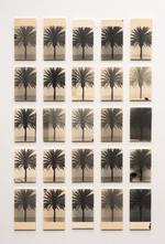 A Palm Tree Is A Palm Tree Is A Palm Tree (For Amélie), 2020
