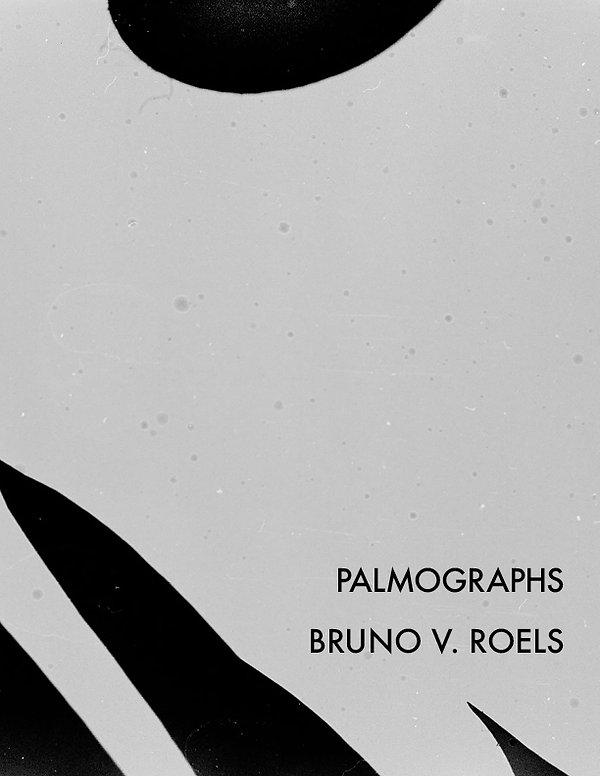 palmographs.jpg