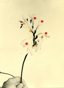 Flowers For Henriette (28 Vignon Street Edition) #2