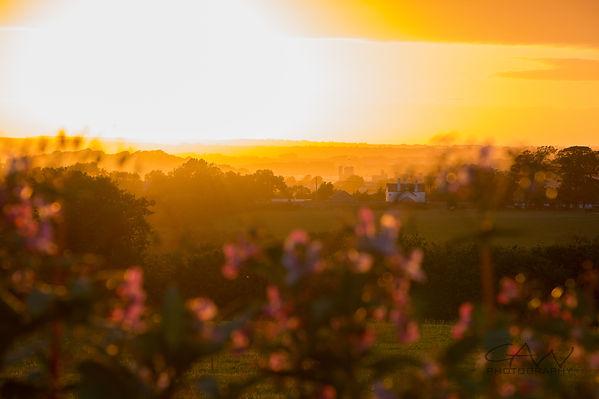 Sunset-2747.jpg