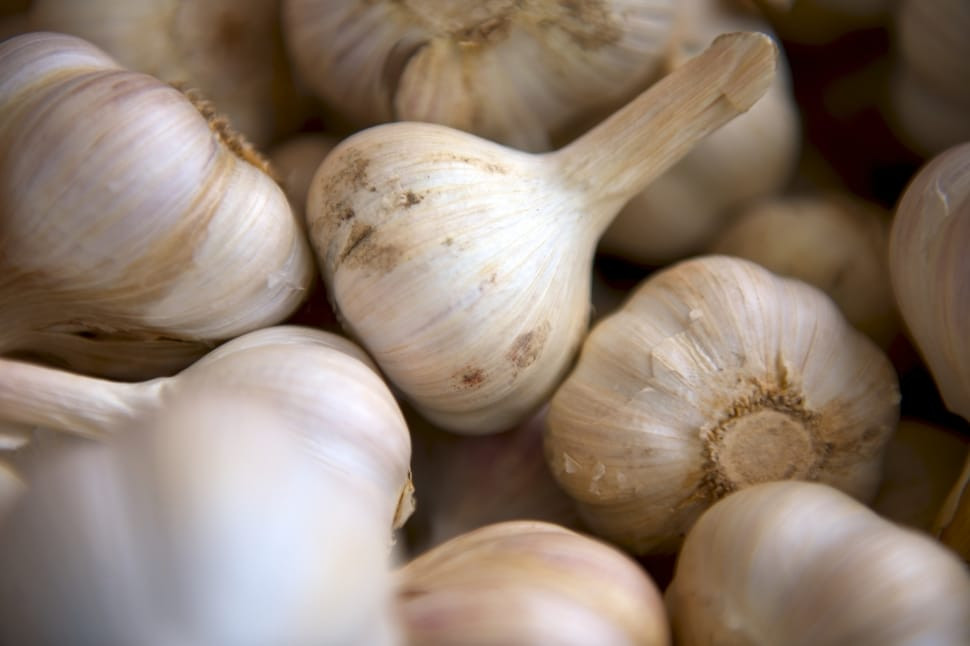 Garlic up close.jpg